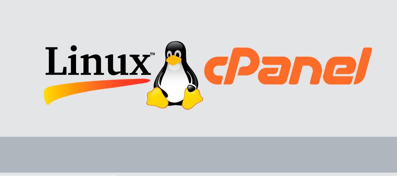 ¿Por qué elegir un hosting con Linux?